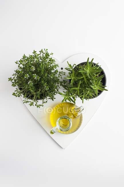 Herbes, ail et huile d'olive, ingrédients du régime méditerranéen. — Photo de stock