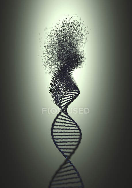 DNA strand with damage, conceptual digital illustration. — Stock Photo