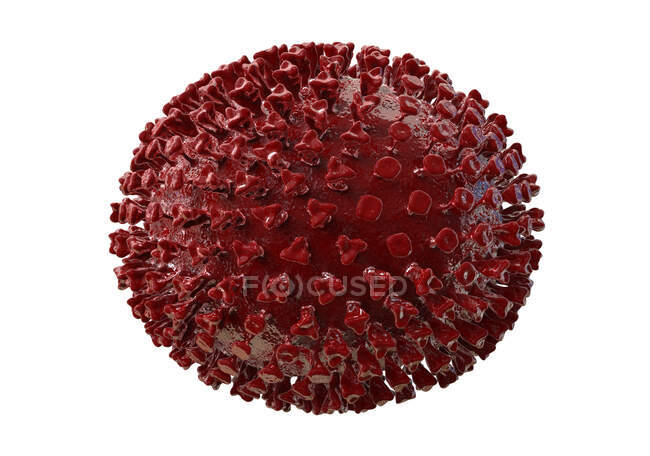 Virus influenzali, illustrazione per computer — Foto stock