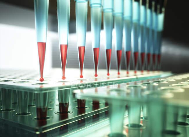 Investigación microbiológica, ilustración. Pipeta multicanal y placas de varios pozos en laboratorio de microbiología - foto de stock
