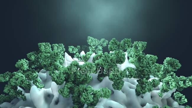 Anticorpos que atacam células cancerígenas, ilustração computacional — Fotografia de Stock