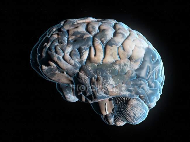 Brain Planet, konzeptionelle Computerillustration — Stockfoto