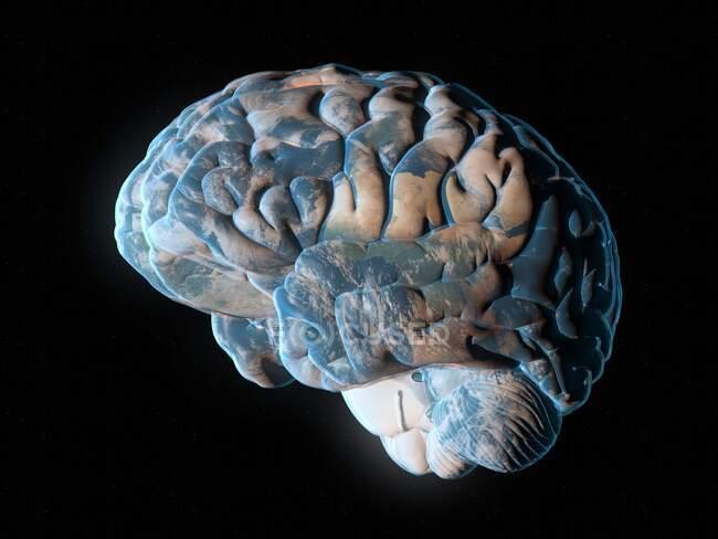 Planeta cerebral, ilustração conceitual do computador — Fotografia de Stock