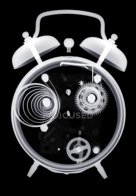 Хвильовий годинник, рентген. — стокове фото