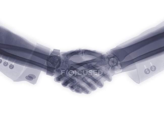 Два виконавчих потискання руки, рентген. — стокове фото