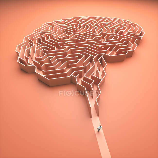 Людський мозок, ілюстрація. — стокове фото