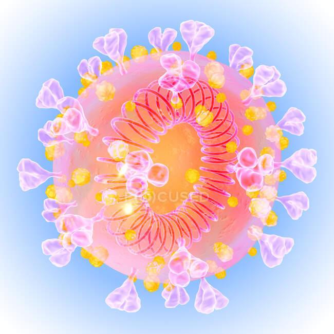 Partícula do coronavírus Covid-19, ilustração computacional. O novo coronavírus SARS-CoV-2 (anteriormente 2019-CoV) surgiu em Wuhan, China, em dezembro de 2019 — Fotografia de Stock