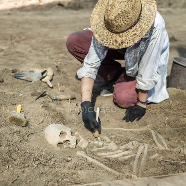 Археологічні розкопки. Молодий археолог розкопує частину людського скелета і черепа з землі.. — стокове фото