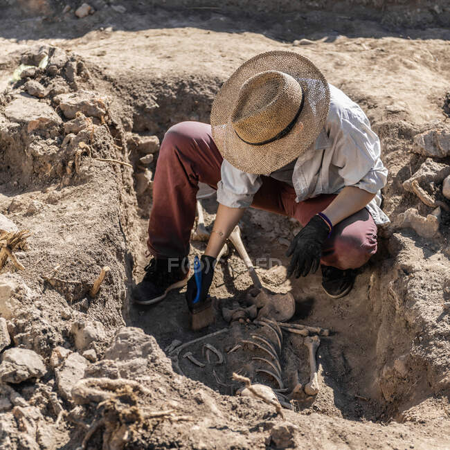 Archaeological excavations. Young archaeologist excavating part of human skeleton and skull from the ground. — Stock Photo