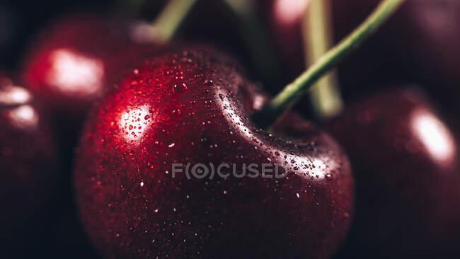 Primer plano de sabrosas cerezas maduras - foto de stock