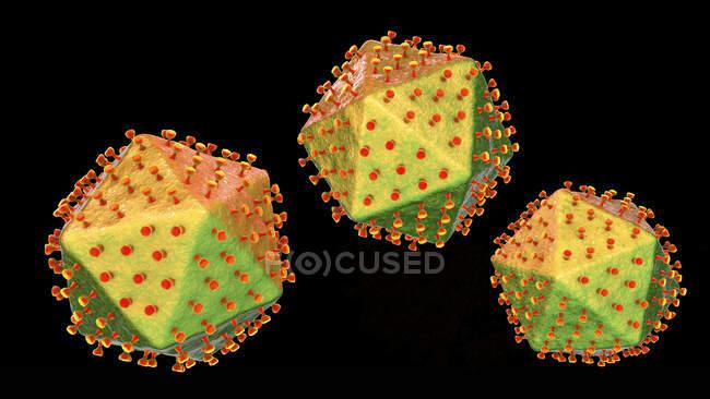 Vírus da peste suína africana, ilustração. Este vírus é membro do grupo do iridovírus que causa a peste suína africana, febre hemorrágica em suínos com elevada taxa de mortalidade — Fotografia de Stock