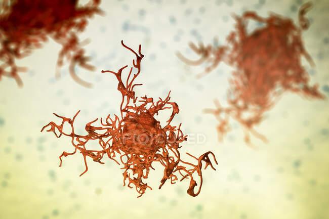 Closeup of Amoeba, computer illustration — Stock Photo