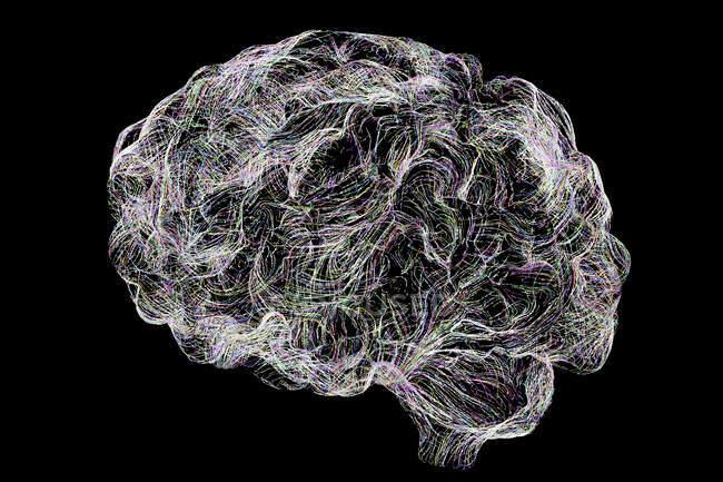 Red neuronal cerebral, ilustración por ordenador. - foto de stock