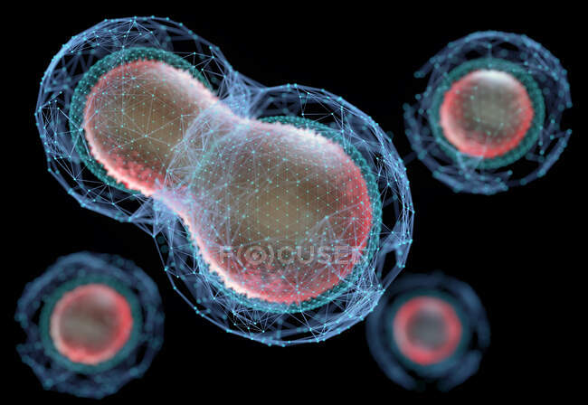 Biotechnology or biotech, concept of creation, division and cellular development. High organic technology with productive purposes — Stock Photo