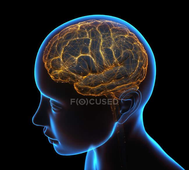 Raggi X della testa e del cervello umano nel concetto di connessioni neurali e impulsi elettrici. — Foto stock