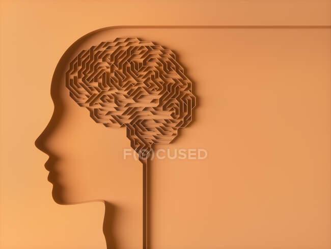 Cerebro humano, ilustración conceptual. - foto de stock