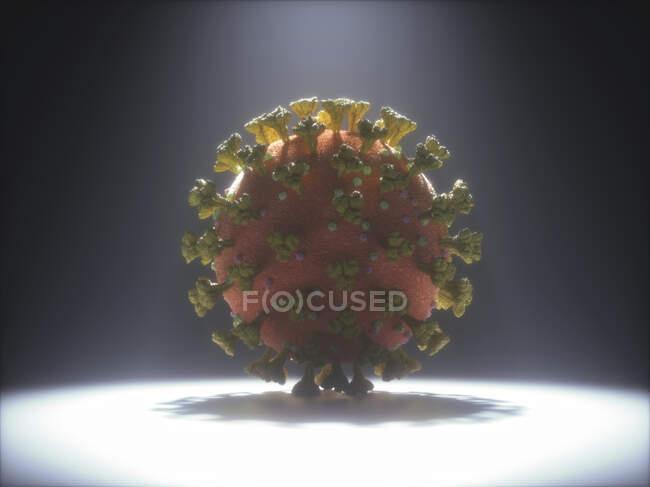 Partículas del coronavirus, ilustración. Diferentes cepas de coronavirus son responsables de enfermedades como el resfriado común, gastroenteritis y SARS (síndrome respiratorio agudo grave) - foto de stock