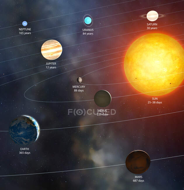 Illustration of the Solar System showing each planet's orbital period (in Earth days or years), the time it takes to complete one orbit around the Sun — Stock Photo