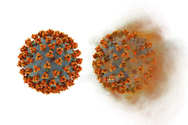 Covid-19 coronavirus, ilustración conceptual. El nuevo coronavirus SARS-CoV-2 (anteriormente 2019-CoV) surgió en Wuhan, China, en diciembre de 2019 - foto de stock