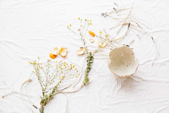 Komposition mit Blütenzweigen und Mandarinenschalen — Stockfoto