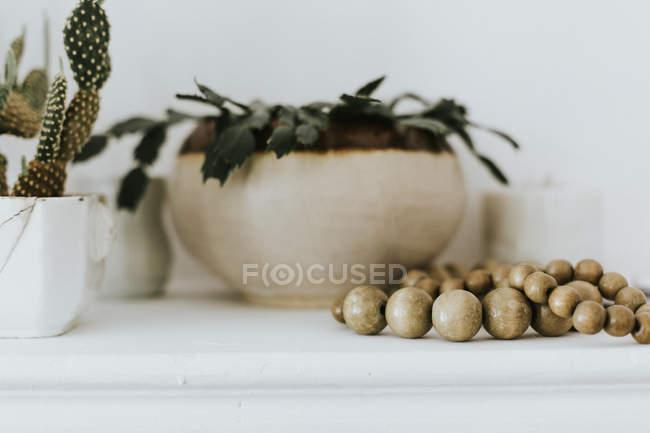 Растения в горшках и деревянные подстилки на стол — стоковое фото