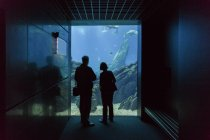 People looking at huge aquarium — Stock Photo