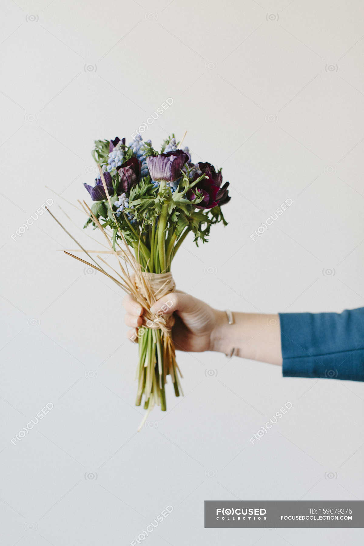Bouquet of anemones and hyacinths flowers — Stock Photo | #159079376