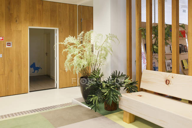 Office space interior with plants in pots — Stock Photo
