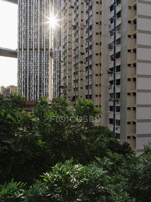 Singapore cityscape with apartment buildings — Stock Photo