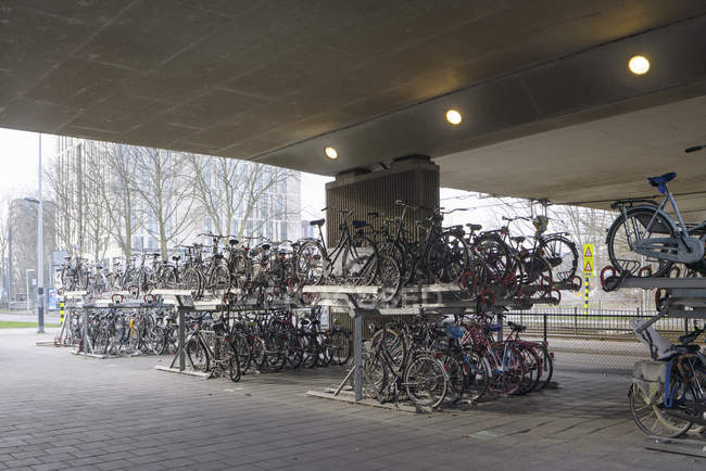 AMSTERDAM, NETHERLANDS - FEBRUARY 9, 2018: Bicycles parked under bridge in Zuidas business district — Stock Photo