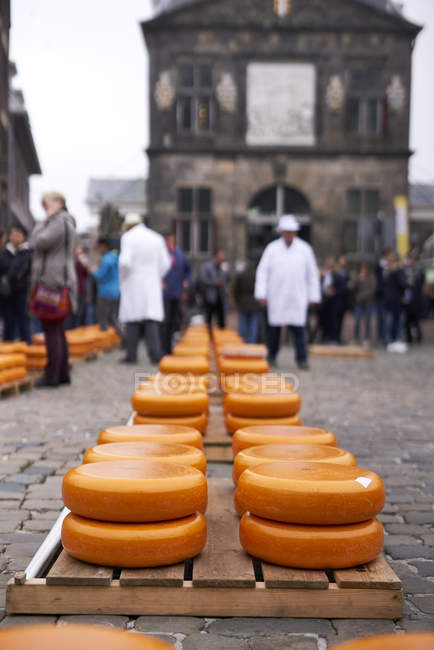 Wheels of cheese at traditional market in historical center of town, Gouda, Netherlands — Stock Photo