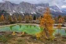 Limides озеро осенью — стоковое фото