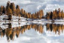 Agua clara lago, árboles y nieve pendientes - foto de stock