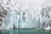 Замороженные водопады и деревья — стоковое фото