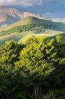 Paysage de Castelluccio di Norcia — Photo de stock