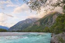 Река Тальяменто на закате — стоковое фото