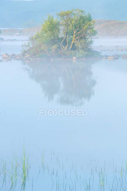 Morning mist on lake — Stock Photo