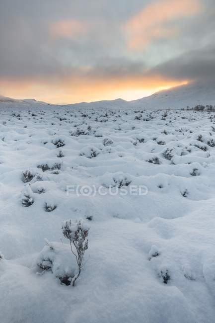Снег, охватывающих Раннок Мур — стоковое фото