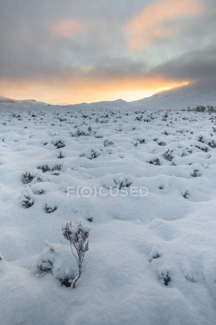 Snow covering Rannoch Moor — Stock Photo