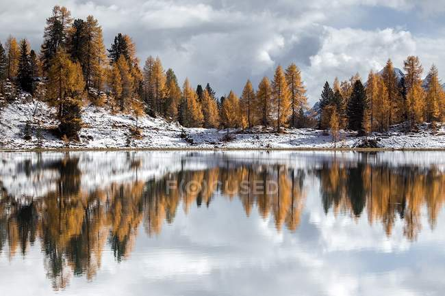 Clear water lake, trees and snowy slopes — Stock Photo