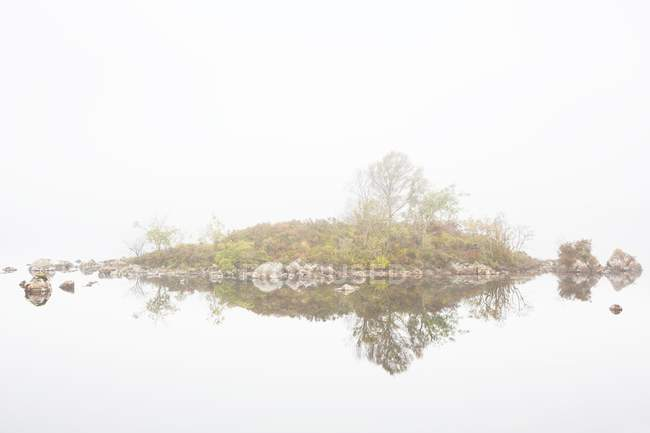 Small island with trees with reflection — Stock Photo