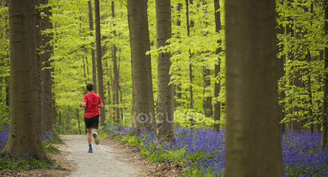 Man running in Blue Forest — Stock Photo