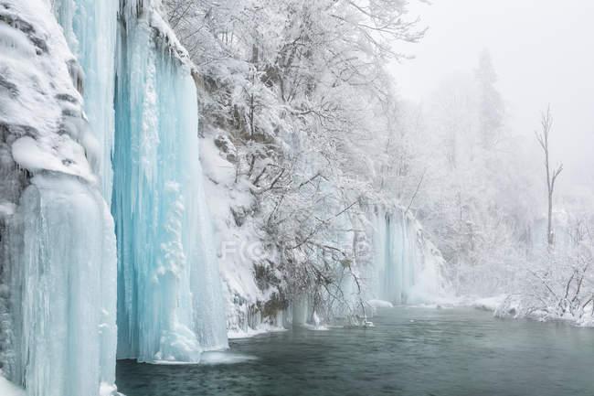 Árboles y cascadas congeladas - foto de stock