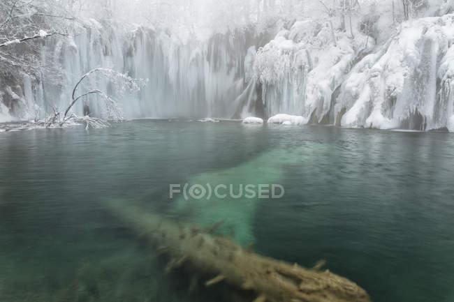 Paesaggio ghiacciato con alberi innevati — Foto stock