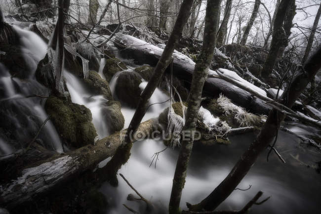 Cascadas en el Parque Nacional de Plitvice - foto de stock