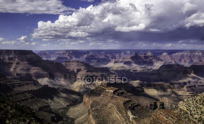 Південному краю на Гранд-Каньйон — стокове фото