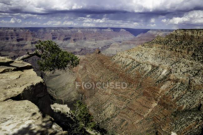 Parque Nacional de borda sul do grand canyon — Fotografia de Stock