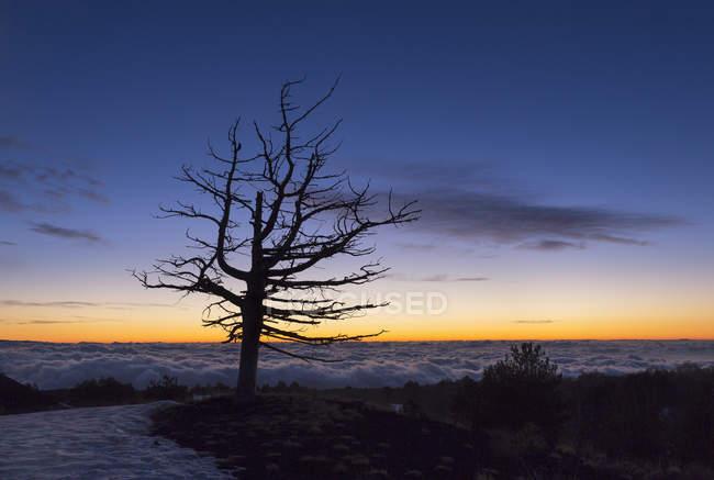 Einbruch der Dunkelheit von Sartorius Bergen gesehen — Stockfoto