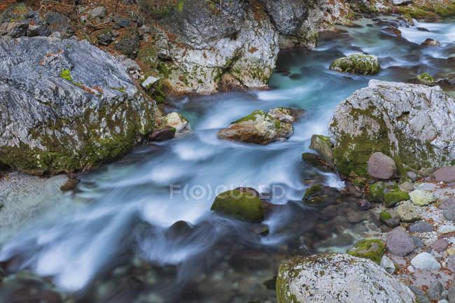 Slizza поток в Юлийских Альпах — стоковое фото