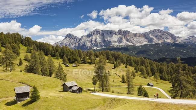 Chemin et prairies de Utia Vaciara — Photo de stock